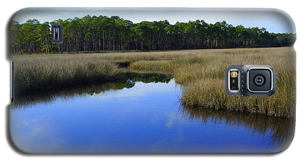 Marsh Water Creek Galaxy S5 Case