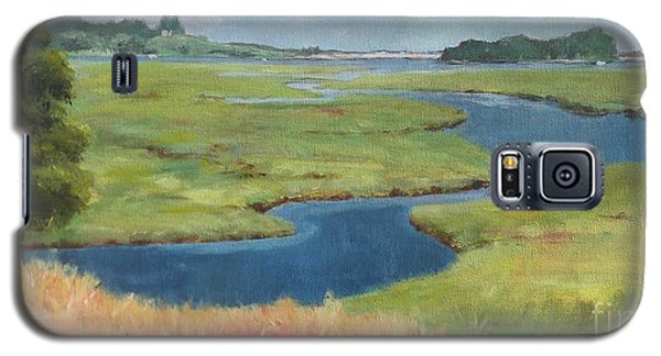 Marshes Galaxy S5 Case