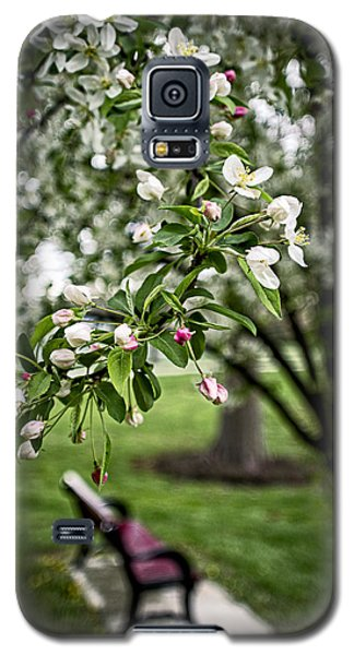 Mary's Tree And Bench Galaxy S5 Case