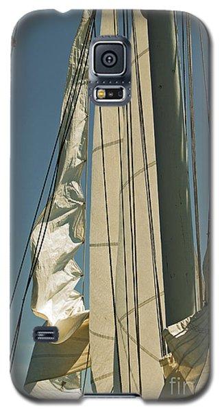 Mast Stepping Galaxy S5 Case