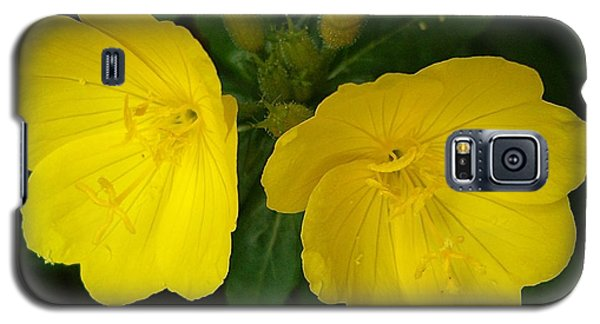 Galaxy S5 Case featuring the photograph Matching Pair by Sara  Raber