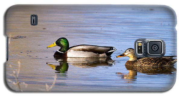Mated Mallards Galaxy S5 Case