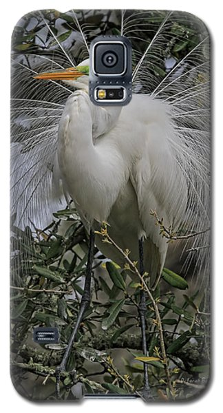 Mating Plumage Galaxy S5 Case
