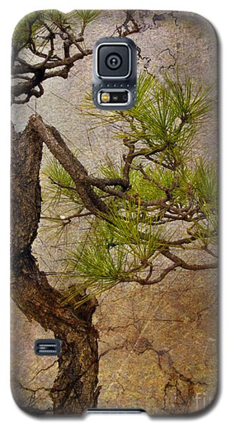 Matsu Galaxy S5 Case