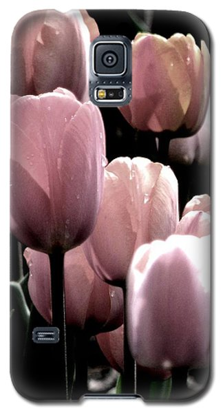 Mauve In The Morning Galaxy S5 Case