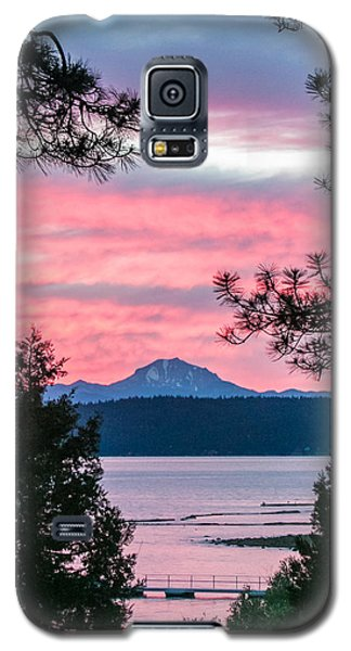 Mauve Magnificence Galaxy S5 Case