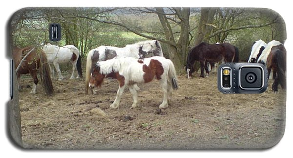 Galaxy S5 Case featuring the photograph May Hill Ponies 2 by John Williams