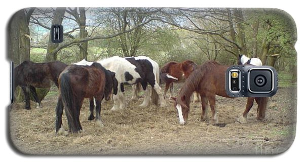 Galaxy S5 Case featuring the photograph May Hill Ponies 3 by John Williams