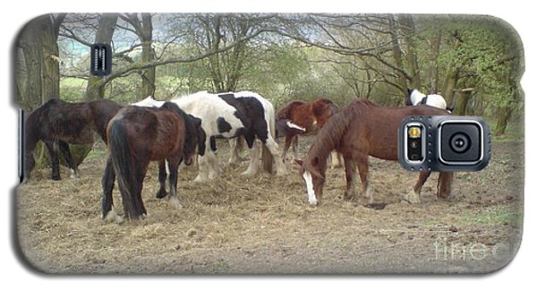 May Hill Ponies 3 Galaxy S5 Case by John Williams