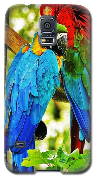 Galaxy S5 Case featuring the photograph Mccaws by Al Fritz