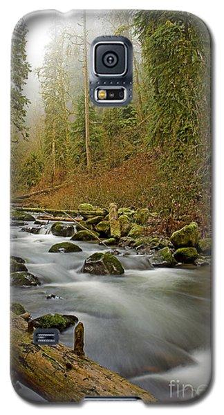 Mcdowell Creek Landscape Galaxy S5 Case by Nick  Boren