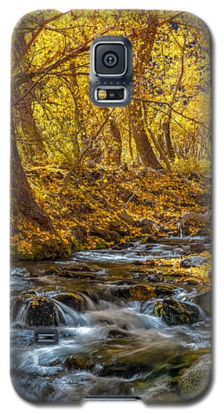 Mcgee Creek Galaxy S5 Case