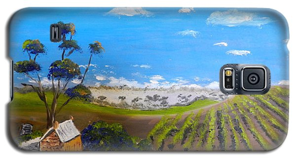 Mclarren Vale Vine Yards Galaxy S5 Case by Pamela  Meredith