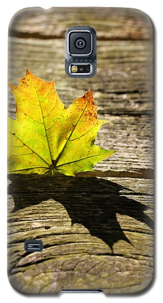 Me And My Shadow 2 Galaxy S5 Case by Mary Bedy
