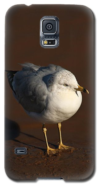 Galaxy S5 Case featuring the photograph Me And My Shadow by Bob and Jan Shriner