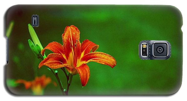 Galaxy S5 Case featuring the photograph Meadow Beauty by Gary Wonning