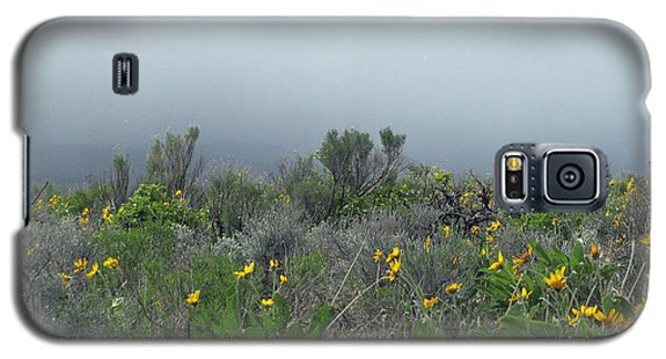 Galaxy S5 Case featuring the photograph Meadow Fog by Jennifer Muller