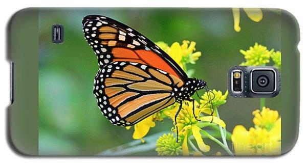 Meadow Monarch Galaxy S5 Case