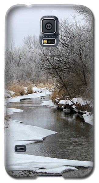 Meandering Geese Galaxy S5 Case