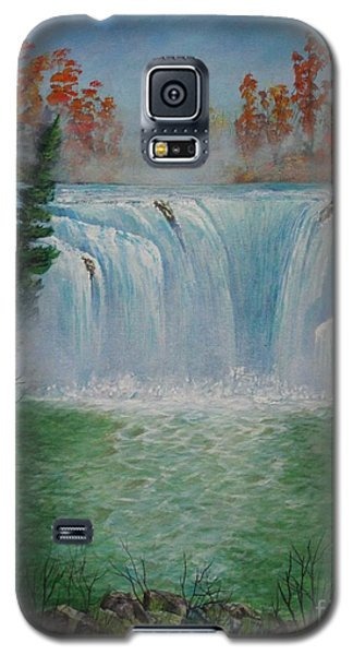 Mediation Falls Galaxy S5 Case
