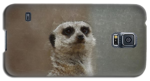 Meerkat 5 Galaxy S5 Case by Ernie Echols