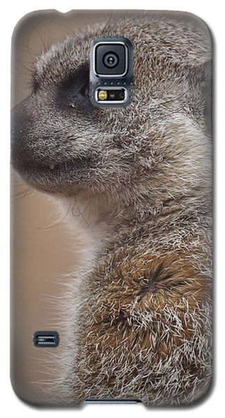 Meerkat 9 Galaxy S5 Case by Ernie Echols