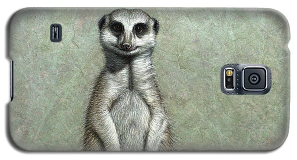 Meerkat Galaxy S5 Case - Meerkat by James W Johnson