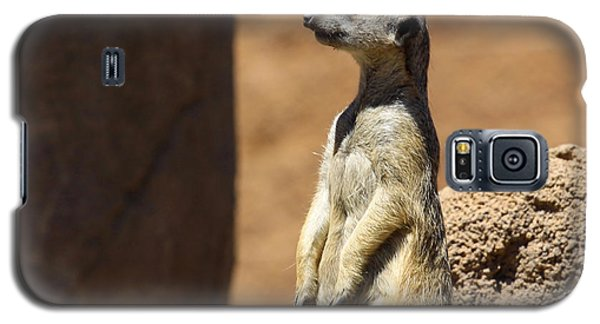 Meerkat Lookout Squared Galaxy S5 Case