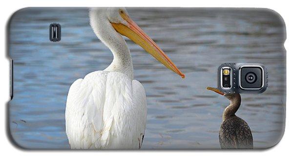 Meeting Of Beaks Galaxy S5 Case