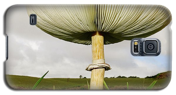 Mega Mushroom Iv Galaxy S5 Case