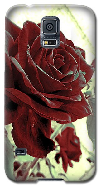 Melancholy Rose Galaxy S5 Case by Shawna Rowe