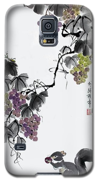 Melody Of Life II Galaxy S5 Case by Yufeng Wang