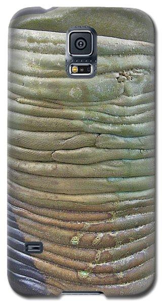 Meltings 05-016 Galaxy S5 Case by Mario Perron
