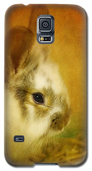 Memories Of Watership Down Galaxy S5 Case