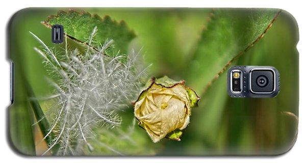 Galaxy S5 Case featuring the photograph Memories by Olga Hamilton
