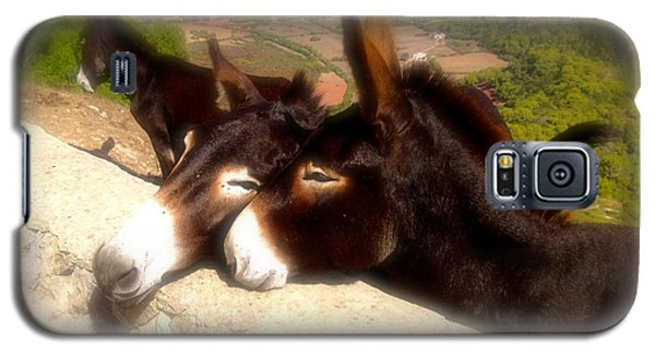 Menorcan Donkeys Galaxy S5 Case