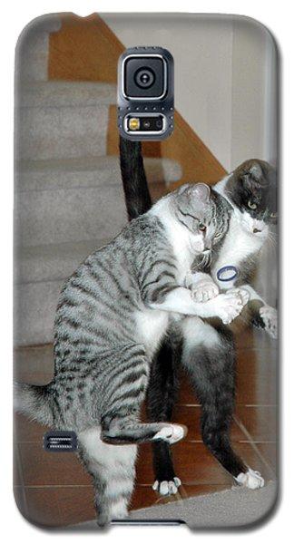 Meow Vows Galaxy S5 Case by LeeAnn McLaneGoetz McLaneGoetzStudioLLCcom