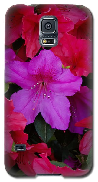 Merging Azaleas 2 Galaxy S5 Case by Penny Lisowski