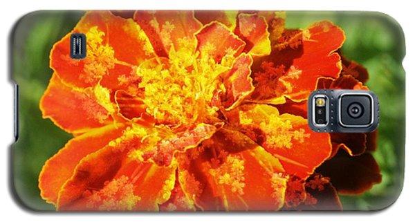 Merry Marigold Galaxy S5 Case