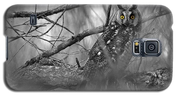 Mesmerizing Eyes Galaxy S5 Case by James Peterson