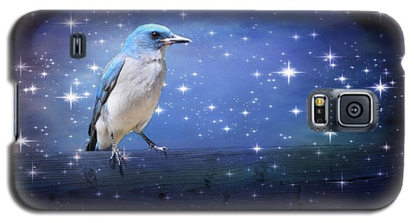 Mexican Blue Jay Galaxy S5 Case