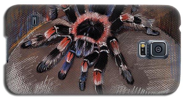 Mexican Redknee Tarantula Galaxy S5 Case