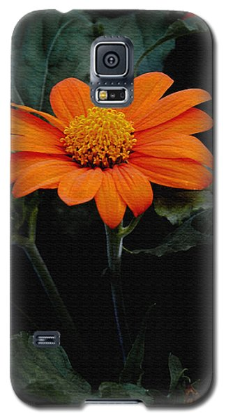 Galaxy S5 Case featuring the photograph Mexican Sunflower by James C Thomas