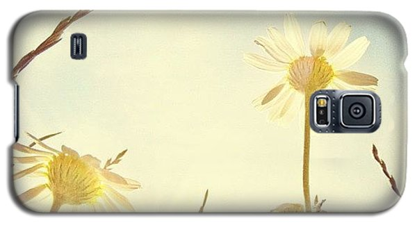 Sunny Galaxy S5 Case - #mgmarts #daisy #all_shots #dreamy by Marianna Mills