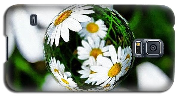 #mgmarts #daisy #flower #weed #summer Galaxy S5 Case by Marianna Mills