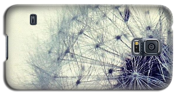 Sky Galaxy S5 Case - #mgmarts #dandelion #love #micro by Marianna Mills