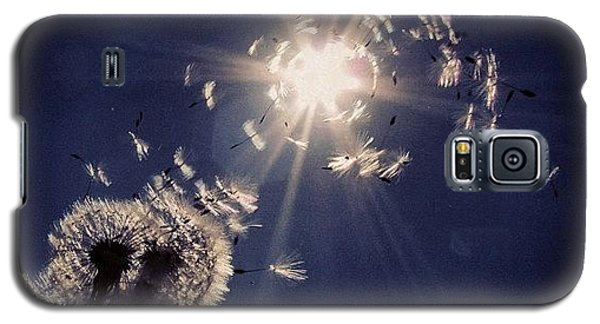 Sky Galaxy S5 Case - #mgmarts #dandelion #wish #makeawish by Marianna Mills