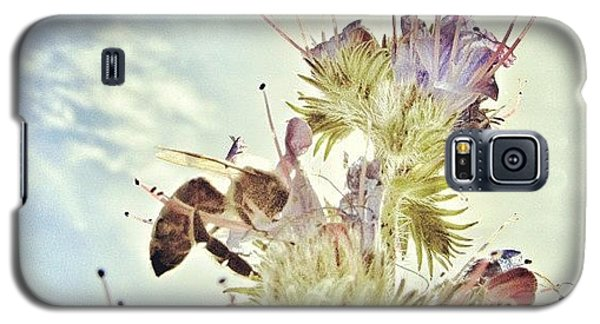 Sky Galaxy S5 Case - #mgmarts #flower #spring #summer #bee by Marianna Mills
