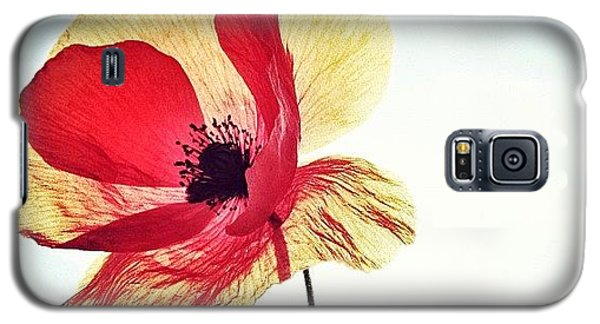 #mgmarts #poppy #nature #red #hungary Galaxy S5 Case