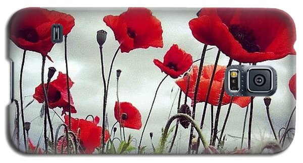 #mgmarts #poppy #weed #flower #spring Galaxy S5 Case